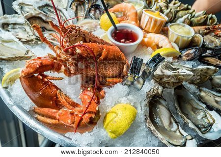 Seafood plate. Different molluscs and crustaceans on ice.