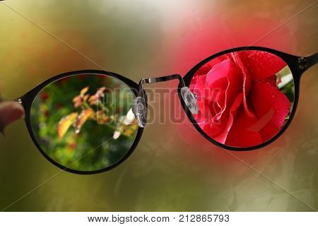 Short Sight Myopia Glasses On Summer Garden With Rose Background Sharp Focus