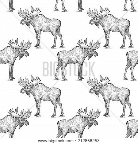 Elk or moose. Seamless pattern with forest animals. Hand drawing of wildlife. Vector illustration art. Black and white. Old engraving. Vintage. Design for fabrics paper