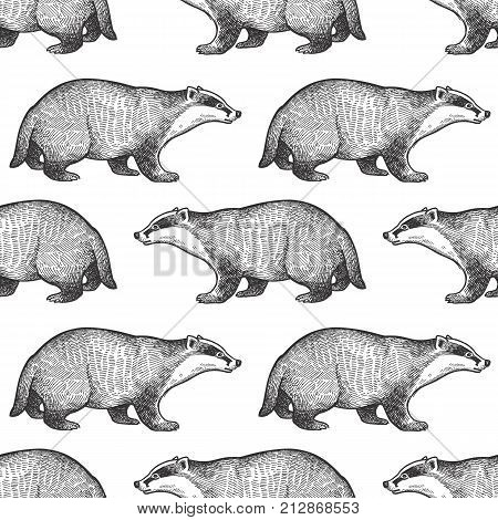 Badger or brock. Seamless pattern with forest animals. Hand drawing of wildlife. Vector illustration art. Black and white. Old engraving. Vintage. Design for fabrics paper textiles fashion.