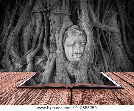 conceptual book image of Head of sand stone buddha in a tree at Wat Mahathat Ayutthaya Thailand public temple