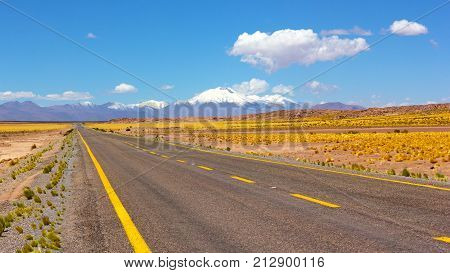 A road leading to snowy volcanic mountains Chile North America. Atacama Desert panorama with empty road grass land and mountains on horizon.