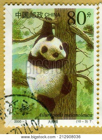 GOMEL, BELARUS, 27 OCTOBER 2017, Stamp printed in China shows image of the Ailuropoda melanoleuca, circa 2000.