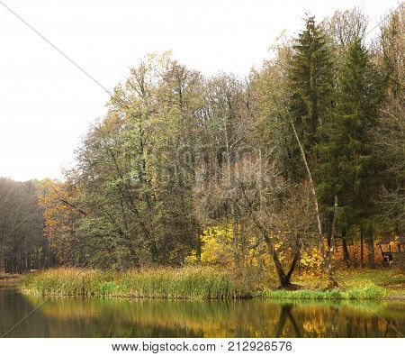 Different Views Of Autumn Scenery