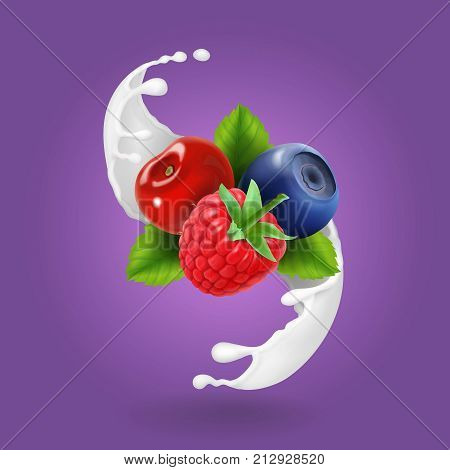 Ripe forest berries and milky splash or yogurt. Realistic design icon vector.