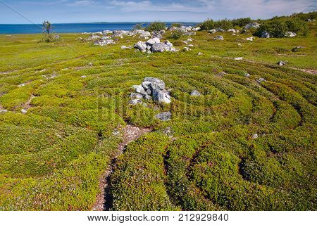 Enigmatical labyrinth on Bolshoi Zayatsky island, Solovetsky archipelago, North Russia