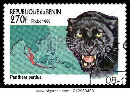 STAVROPOL RUSSIA - November 08 2017 : A Postage Stamp Printed in the Benin shows Black Panther (panthera pardus) circa 1999