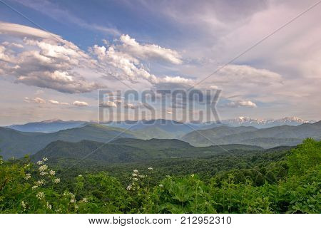 Mountain landscape with green valley and snow peaks