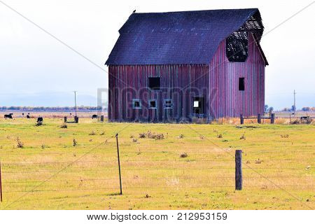 Forgotten landscape including an abandoned collapsing wooden barn taken on a rural prairie