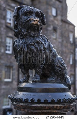 Bronze statue of famous scottish dog in Edinburgh people rub its nose for luck
