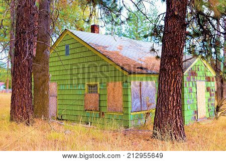 Haunting image of an abandoned home surrounded by a pine forest taken in an economically depressed forgotten landscape