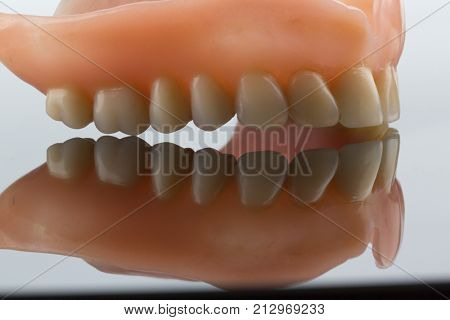 dentition with reflection