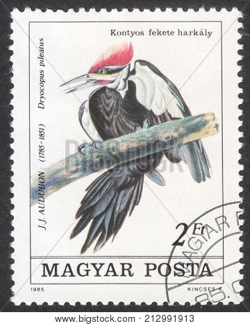 MOSCOW RUSSIA - CIRCA OCTOBER 2017: a post stamp printed in HUNGARY shows Pileated Woodpecker (Dryocopus pileatus) the series