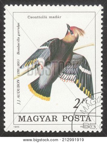 MOSCOW RUSSIA - CIRCA OCTOBER 2017: a post stamp printed in HUNGARY shows Bohemian Waxwing (Bombycilla garrulus) the series