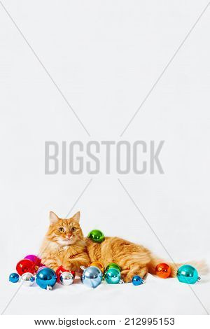 Cute ginger cat lies among christmas decorations - bright colorful balls. The fluffy pet comfortably settled to sleep or to play. Cute cozy holiday background morning bedtime at home. Place for text.