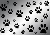 black and white background with paws for your design poster