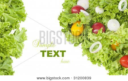 Fresh salad over white