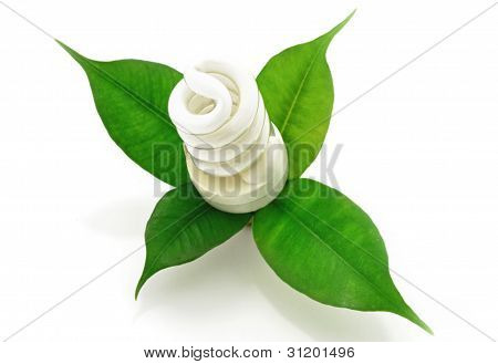 Fluorescent Lamp Bio With Green Leaf Eco Concept