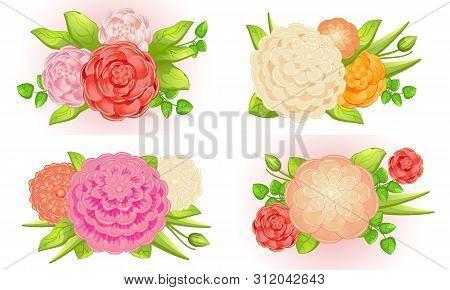 Camellia Banner Set. Cartoon Illustration Of Camellia Vector Banner Set For Web Design