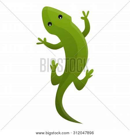 Top View Reptile Icon. Cartoon Of Top View Reptile Vector Icon For Web Design Isolated On White Back