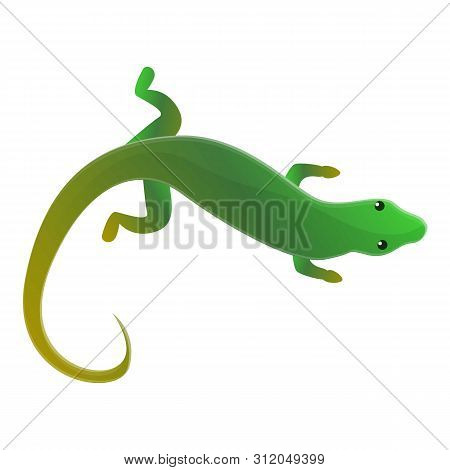 Top View Lizard Icon. Cartoon Of Top View Lizard Vector Icon For Web Design Isolated On White Backgr