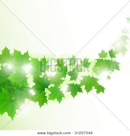 Abstract light green background with flying maple leaves. Raster copy of vector illustration