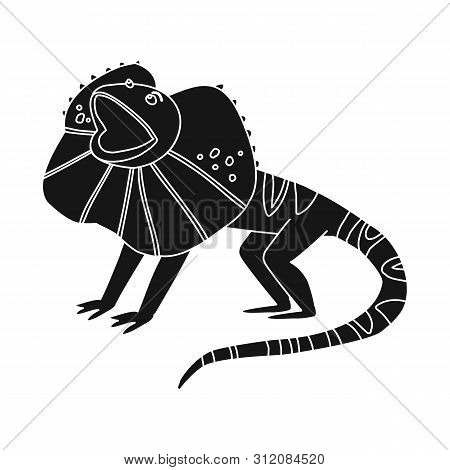 Vector Illustration Of Lizard And Magical Logo. Set Of Lizard And Bright Stock Symbol For Web.