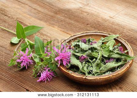Fersh And Dried  Bergamot. Flowers Of Bergamot, Monarda Didyma, On Woodem Board