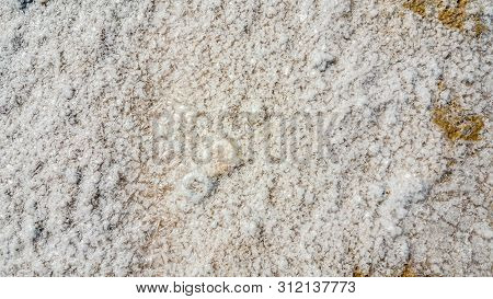 Closeup Of Salty Sand Pattern On A Beach In The Summer