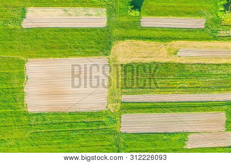 Plowing land furrows for planting agronomical plants among the countryside of grass and meadows trees, aerial view from above poster