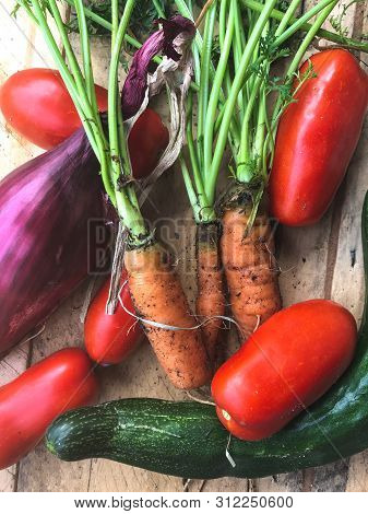 Organic Vegetables Composition