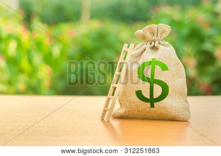 Money Bag With Dollar Symbol And Ladder. Startup And Crowdfunding. Deposit And Savings. Achieving Th