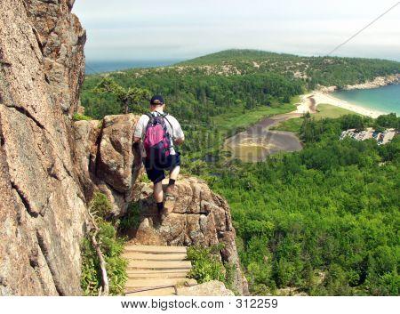 Hiker In Acadia Park