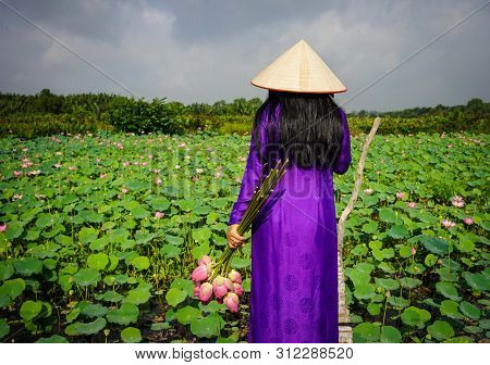 Asian Woman In Traditional Dress With Lotus Flower, On The Lotus Field.