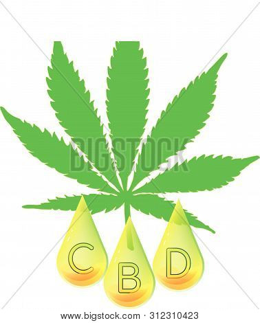 Marijuana Leaf With Cbd Letters Encapsulated In Oil Drops. Vector Logo Icon.
