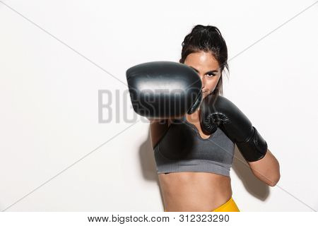 Image of strong concentrated gorgeous young sports fitness woman boxer isolated over white wall background make boxing exercises with gloves.