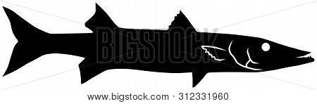 Barracuda Fish Black Vector Silhouette Clip Art Image