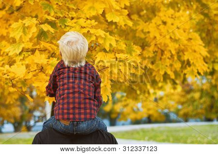 Blond Boy In A Plaid Shirt Sits On His Father's Shoulders. Back View. Autumn Concept