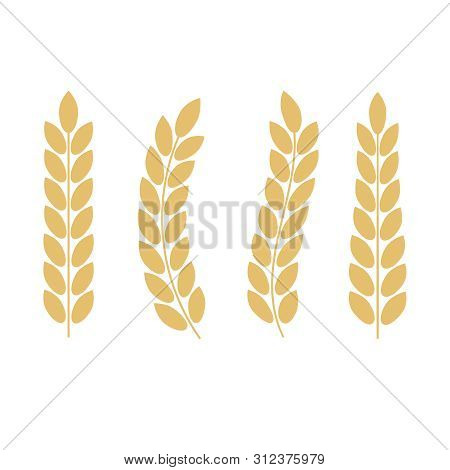 Vector Gold Laurel. Laurel Wreath Award And Golden Ribbon. Award Signs With Laurel Wreath