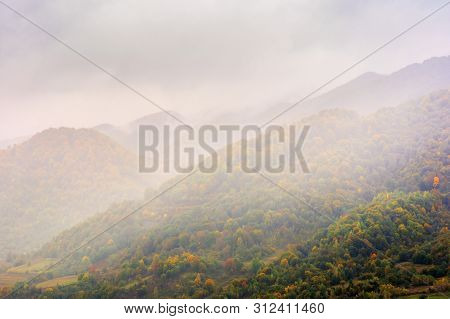 Autumn Rainy Day In Mountains. Beautiful Nature Background. Trees On The Hill In Fall Foliage. Overc