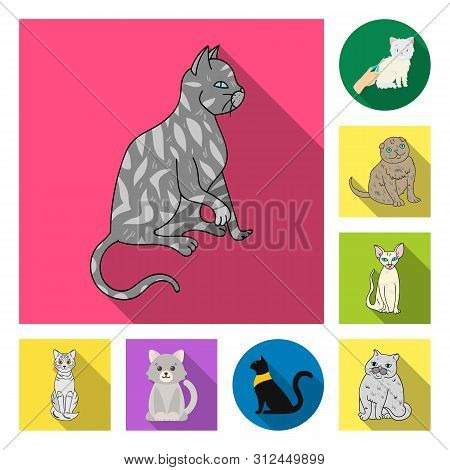 Bitmap Illustration Of Pet And Sphynx Logo. Collection Of Pet And Fun Bitmap Icon For Stock.