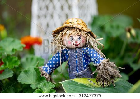 Flora Miscellaneous Objects Garden Figurine Scarecrow Ornamental