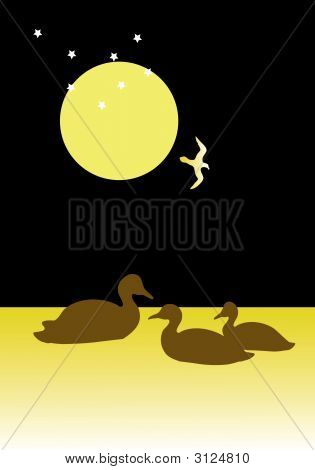 Ducks at night under the moon and stars poster