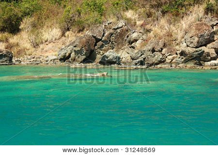 Water and tropical caribbean island