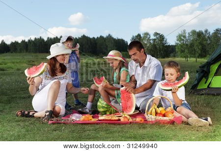families picnic outdoors with food