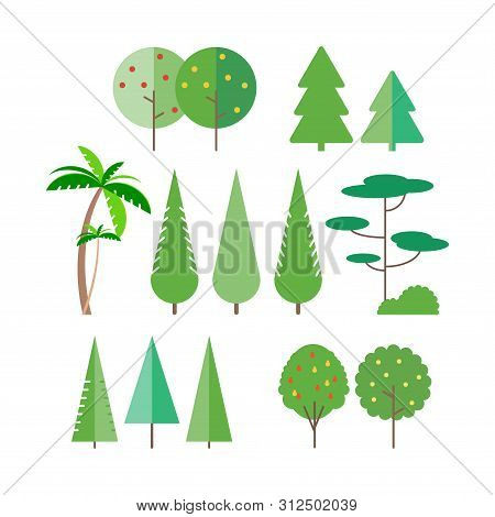 Set Of Trees In Flat Style - Palm Tree, Spruce, Fir-tree, Pine. Fruit Trees- Apple, Pear. Vector Ill