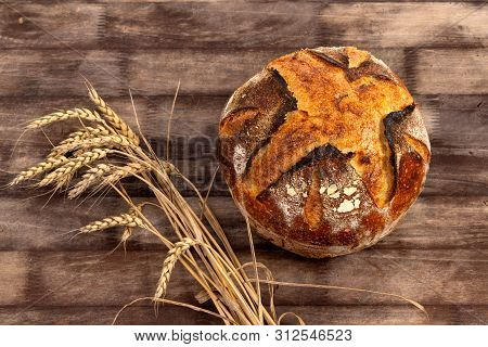 Freshly baked artisan sourdough bread loaf with wheat grains on a wooden board. poster