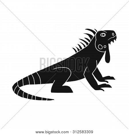 Vector Illustration Of Iguana And Lizard Symbol. Collection Of Iguana And Colorful Stock Symbol For