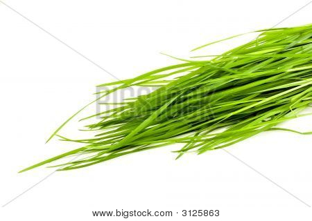 Green Grass Isolated On White Background, Stock Photo
