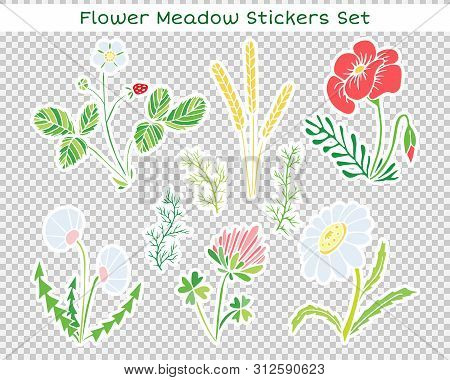 Vector Flowers Set Of Stickers. Naive Childish Illustration With A Flower Glade.